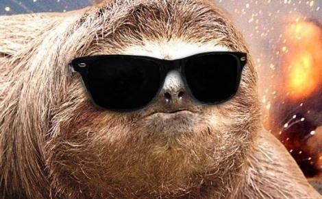 sloth_cool2