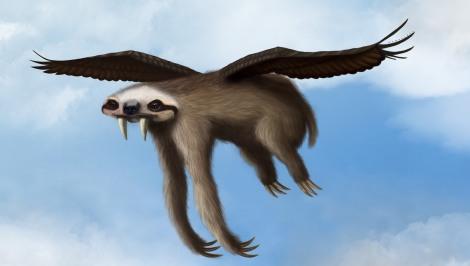 flyingsloth